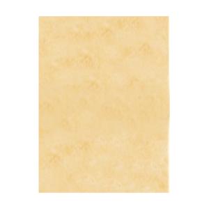 Carta Pergamena